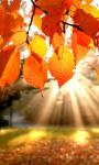 Harmonogram wydarzeń na wrzesień